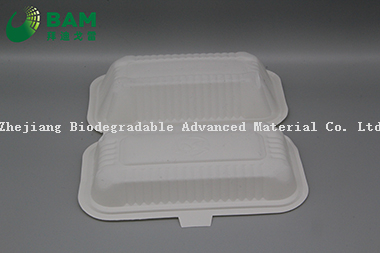 Fully Biodegradable Multi Compartment Disposable Plastic Food Container Compostable Sugarcane Plant Fiber Takw-Away Food Containers