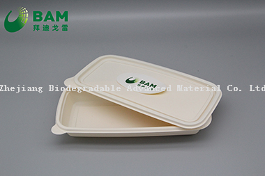 Fully Biodegradable Food Grade Disposable Compostable Sugarcane Plant Fiber Takeaway Food Packaging Containers for Pancake