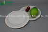 Fully Biodegradable Dividing Compostable Sugarcane Round Plant Fiber Bakery Takeaway Food Package Round Plate for Dessert Cake