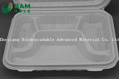 Fully Biodegradable Multi 4 Compartment Disposable Plastic Food Container Compostable Sugarcane Plant Fiber Take-Away Food Containers